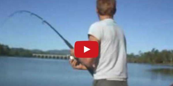 Wenn der Fisch für Kopfschmerzen sorgt